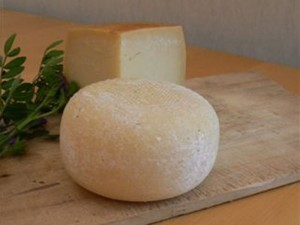 fromage caciotta pizza italienne