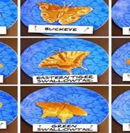 décoration pancakes