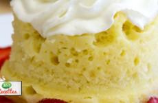 sponge cake rapide au micro-ondes